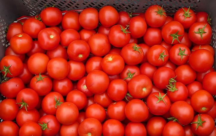 tomàquet, vermell, vegetals, aliments, frescor, Orgànica