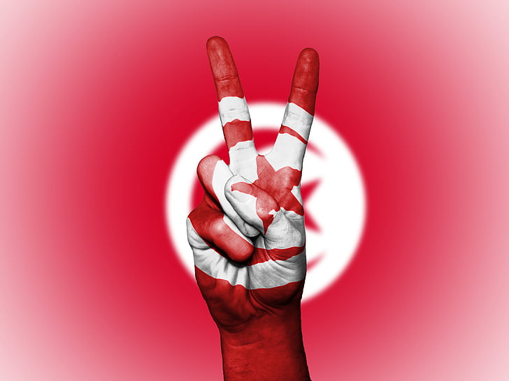 tunisia, peace, hand, nation, background, banner, colors