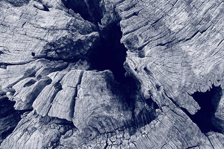 Baum, Tree-Abschnitt, schwarz / weiß, strukturierte, geknackt, Muster, keine Menschen