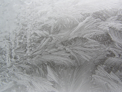 icing, winter window, frost on the window