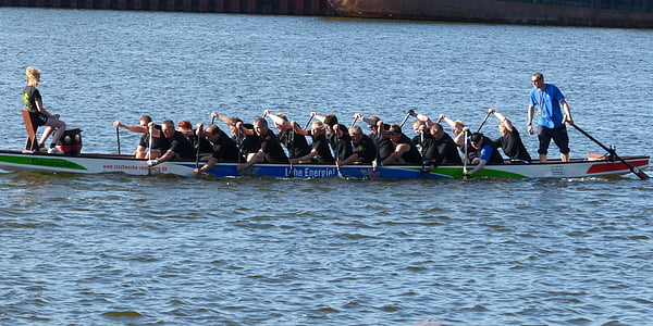 dragon boat, boot, water sports, competition, sport, paddle