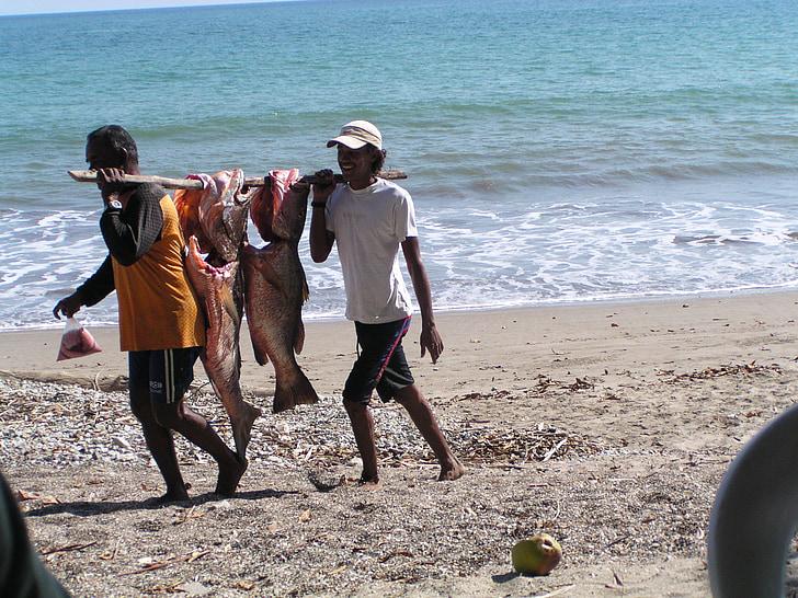 Ωκεανός, ψαράς, παραλία, Ειρηνικού, στη θάλασσα, ψάρια, νερό