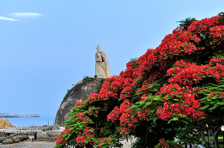 Xiamen, illa de Gulangyu, paisatge