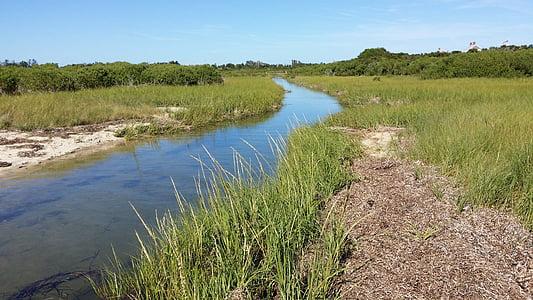 salt myra, tidevann, kyst, myr, salt, kanalen, våtmarksområde