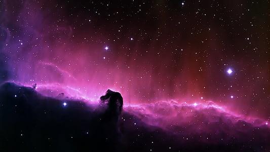 Nebulosa oscura, Nebulosa cabeza de caballo, espacio, estrellas, noche, estrella - espacio, Astronomía