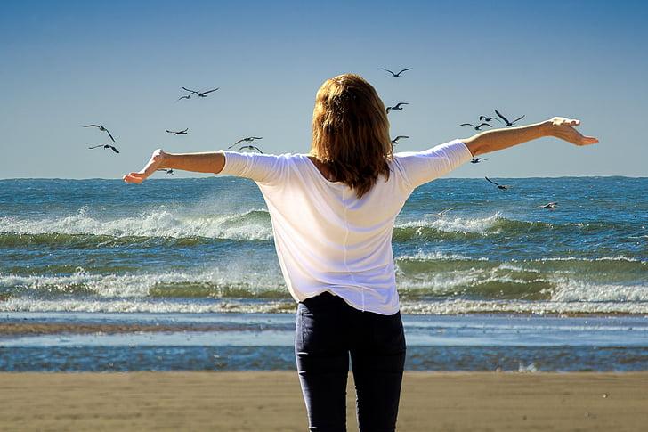 vacances, l'estiu, sol, platja, relaxació, vacances relaxants, vacances
