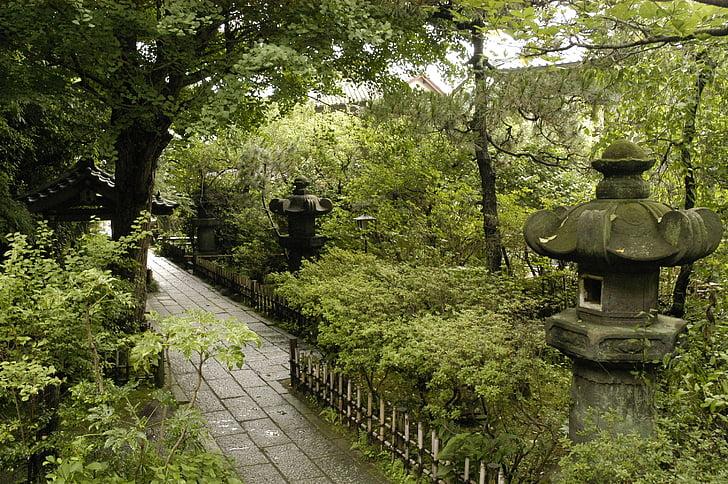 chrám, prírodné, kamenné lampáše, tichý, liečenie, Kamakura, ankokuron-ji