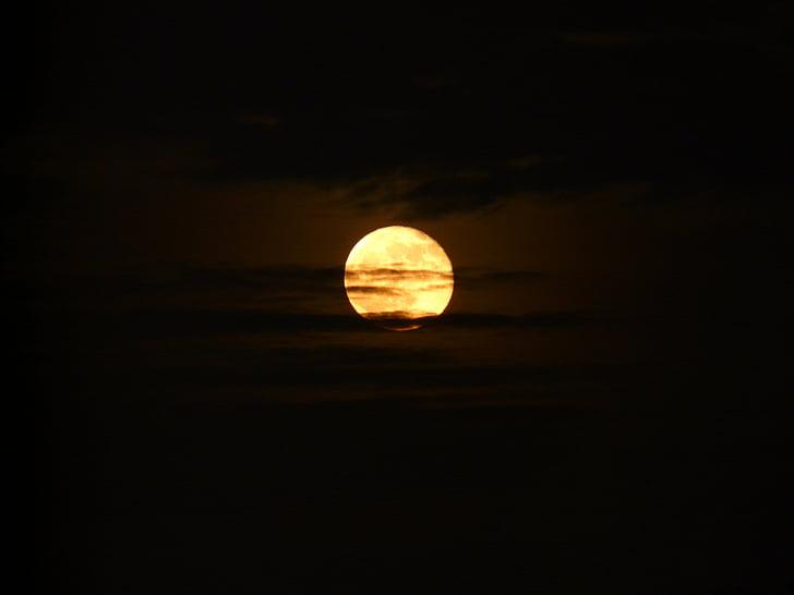Lluna, nit, misticisme, foscor, llum de lluna