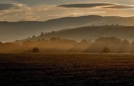 krajobraz, mgła, rano, Sunshine, mgła, lasu, światło