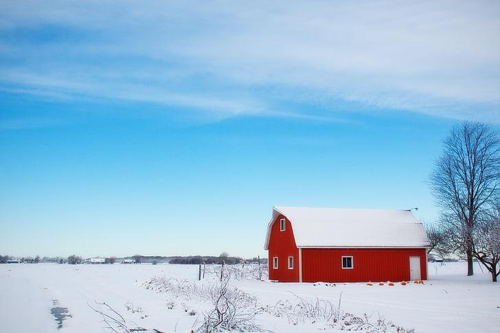 téli pajta, hó, vidéki, Farm, piros, ország, vidéken