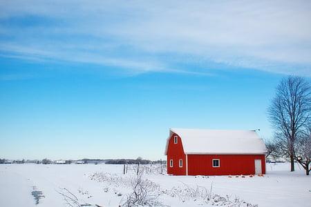graner d'hivern, neu, rural, granja, vermell, país, paisatge
