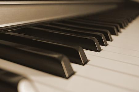 piano, keys, music, piano keys, piano keyboard, musical instrument, keyboard instrument