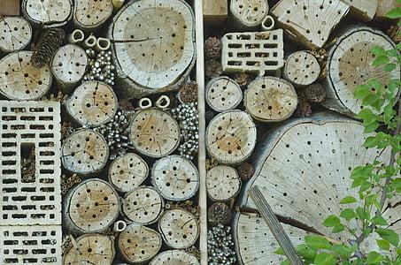hotel insecte, casa insecte, asil insecte, paret d'insectes, Caixa insecte