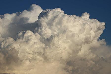 sky, white cloud, cauliflower, cloud - sky, nature, cloudscape, backgrounds