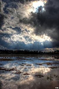 polja, nebo, razmišljanja, oblaki, na prostem, scensko, mirno