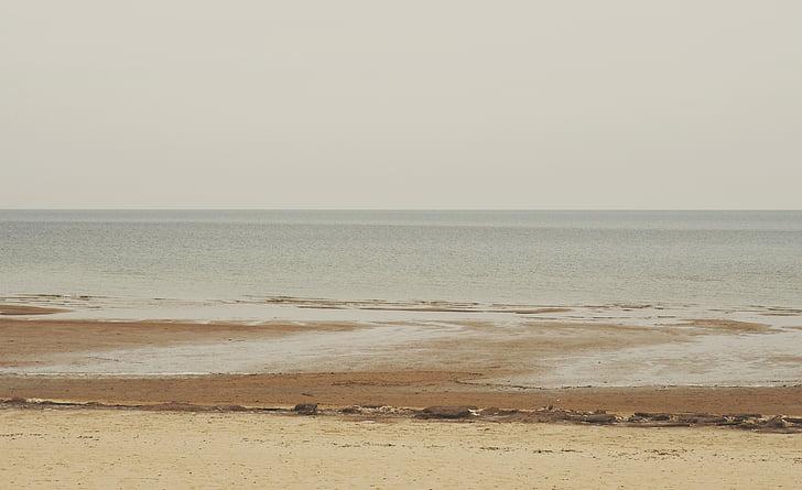seashore, daytime, beach, sand, shore, ocean, sea