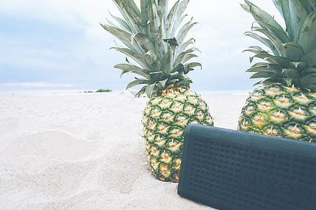 pineapples, beach, picnic, music, sound, speaker, audio