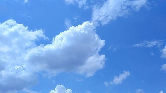 chmury, błękitne niebo, błękitne niebo chmury, Puszyste, Cloudscape, niebo, Latem