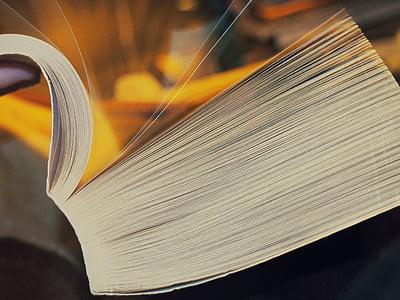 libro, lettura, apprendimento, Studio, scuola, formazione, letteratura