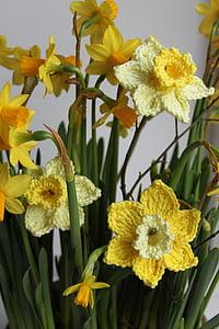 Narcis, kwiaty na szydełku, kwiatowy crochet, na szydełku, żółty, wiosna, Dekoracja