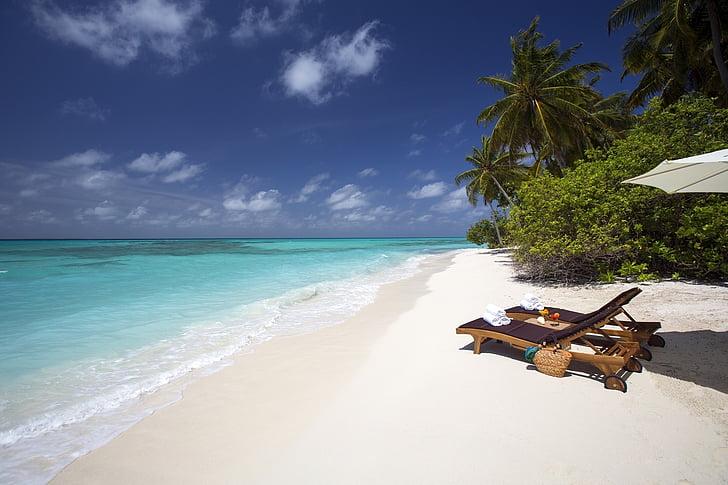 sorra blanca, platja marí, hamaques, tropical, vacances, cel blau, ones