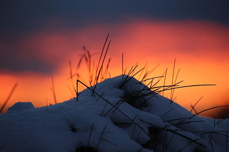 겨울, 잔 광, 일몰, 눈, abendstimmung, 겨울, 자연