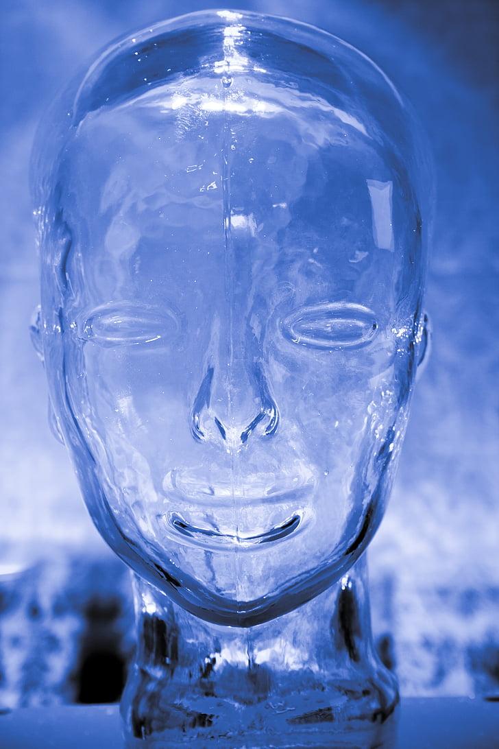 con người, thủy tinh, não bộ, đầu, màu xanh, tình báo, tâm trí