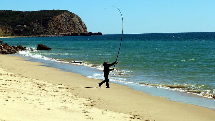 fish, sea, fishing, catch fish, passion, algarve