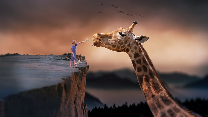 giraffe, power supply, child, photo manipulation, nature, sunset, outdoors