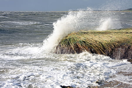 endavant, tempesta, Llac, Mar, l'aigua, Onatge, esquitxades d'aigua