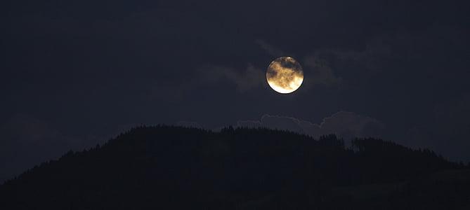 negre, Lluna, Moonrise, nit, cel, esgarrifós, llum de lluna