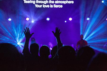 concert, singer, singing, stage, lights, spotlight, people