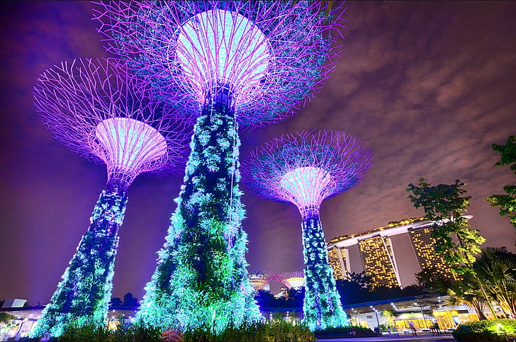 singapore, gardens by the bay, long exposure, marina bay sands, trees, architecture, modern