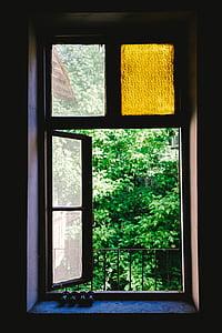 window, shield, glass, green, plants, nature, outside