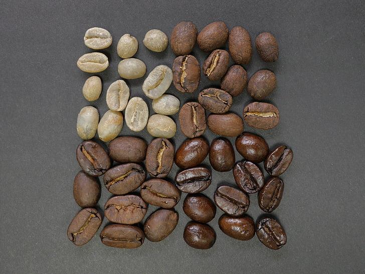 grans de cafè, plaça, divisions, diferències, ingredient, estudi de tir, gran grup d'objectes