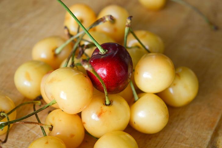 cherry, leadership, other, unlike, berry, society, minority