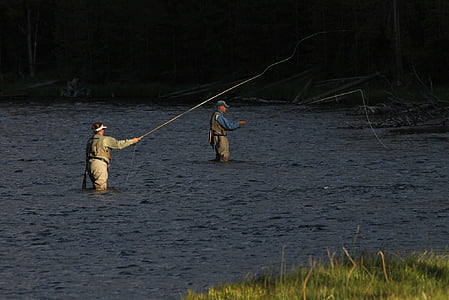 fishermen, anglers, fly fishing, river, angling, activity, spinning