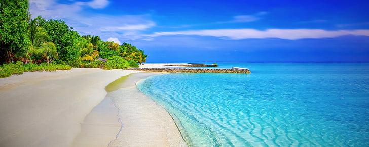 strand, zandstrand, paradijs, Paradise beach, palmbomen, zee, Oceaan