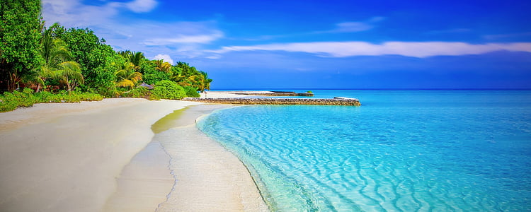 beach, sandy beach, paradise, paradise beach, palm trees, sea, ocean