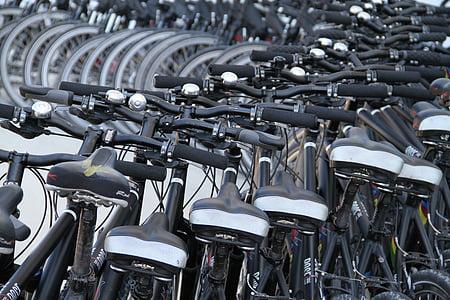rats, riteņi, velosipēdi, Biker, velosipēds, kalnu velosipēds, Sports