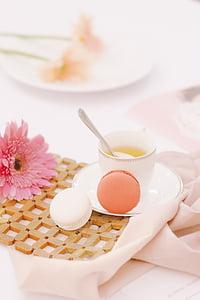 roza, Gerbera, u blizini, žuta, tekućina, šalica za čaj, cvijet