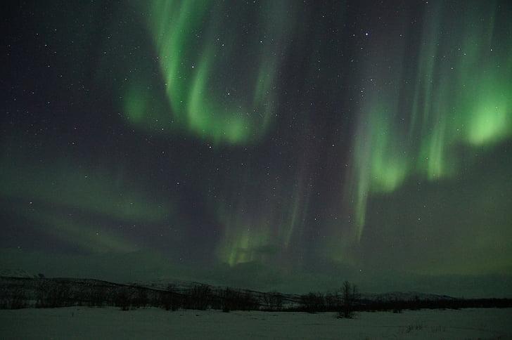 nordlys, Sverige, Lapland, aurora borealis, solvinden, lys fænomen, Aurora