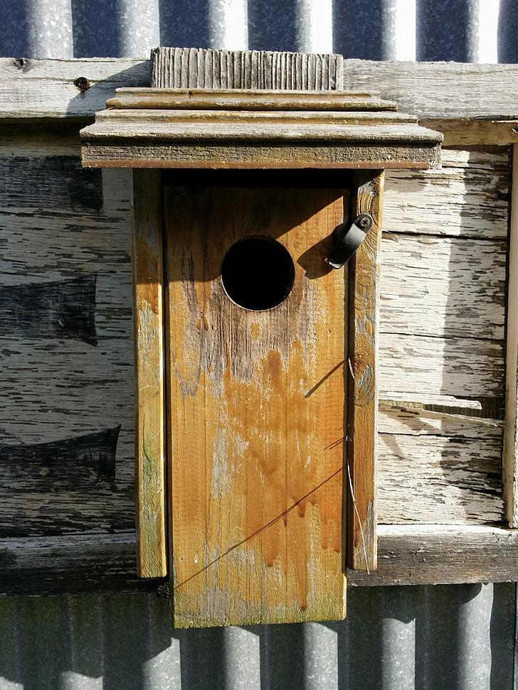Bird house, maan, Ulkouima, Luonto, maaseudun, Bluebird