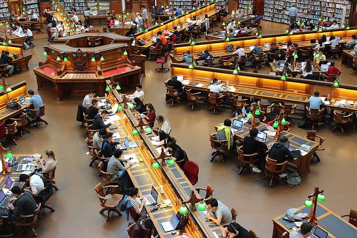 library, la trobe, study, students, row, studying, people