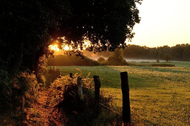 rierol de duvenstedter, Alba, morgenstimmung