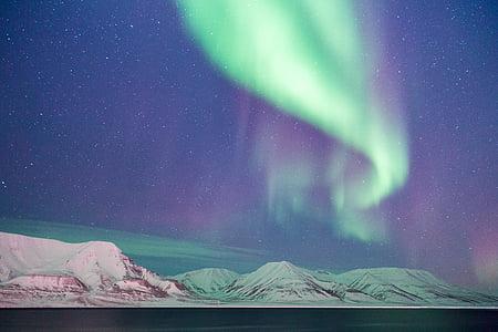 eventyr, Aurora, aurora borealis, stargazing, lys, farver, vintre