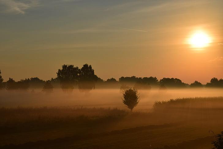soluppgång, morgondimman, Haze, solen, dimma, träd, landskap