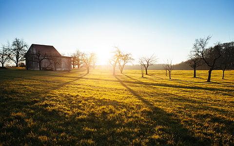 country, field, hut, lawn, meadow, rural, sky