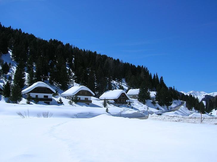 сняг, зимни, Зимно настроение, Фрост, мразовит, природата, пейзаж