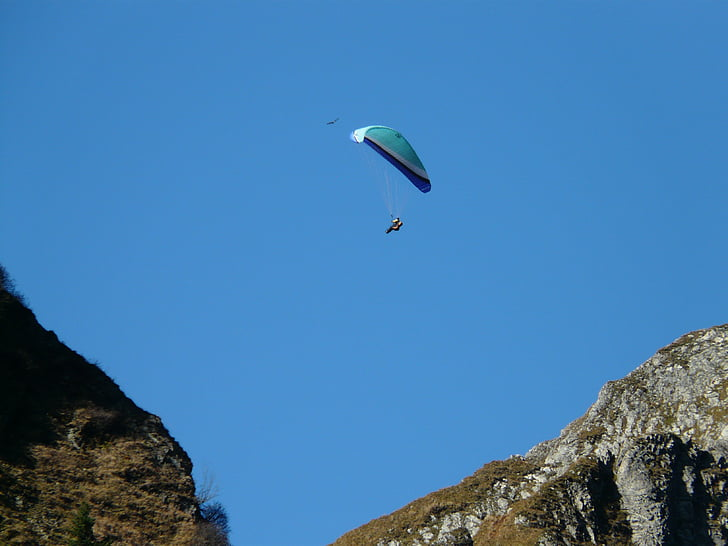 paraglider, paragliding, fly, screen, leisure, sport, hobby